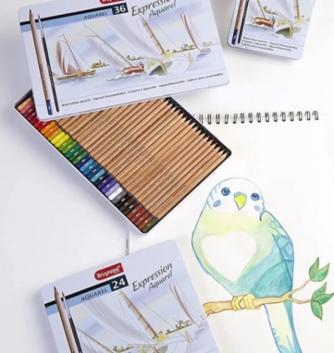 Watercolor pencils Bruynzeel EXPRESSION.jpg